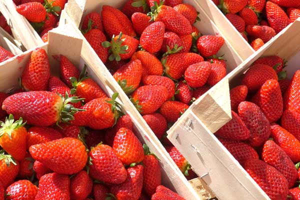 Brothers International Strawberries