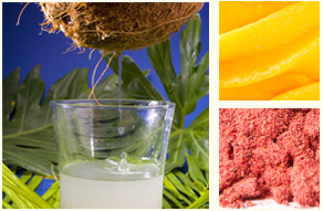 fruit purees, concentrates and powders